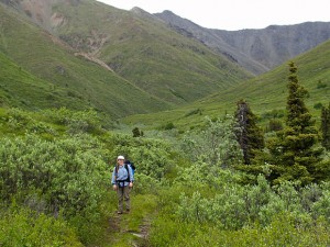 Alaszka, Caribou Creek Trail