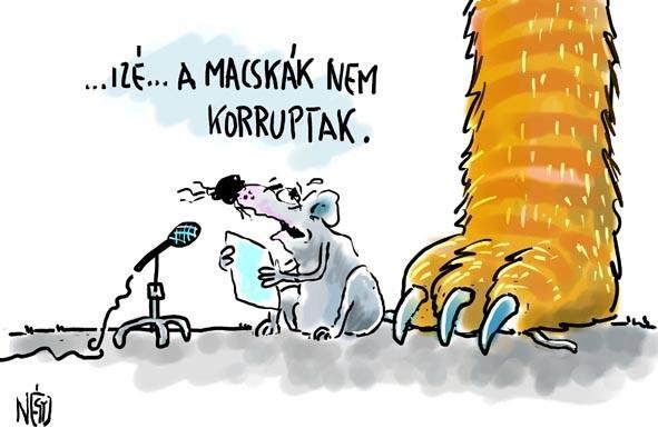 4 madar - macskak nem korruptak