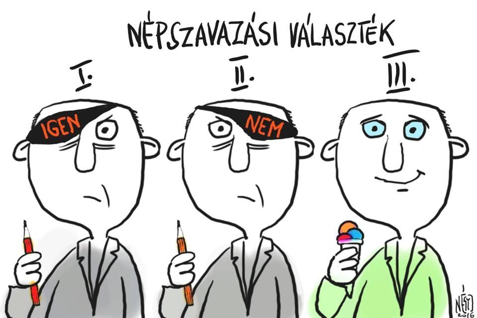 4 madar népszavazás opciok