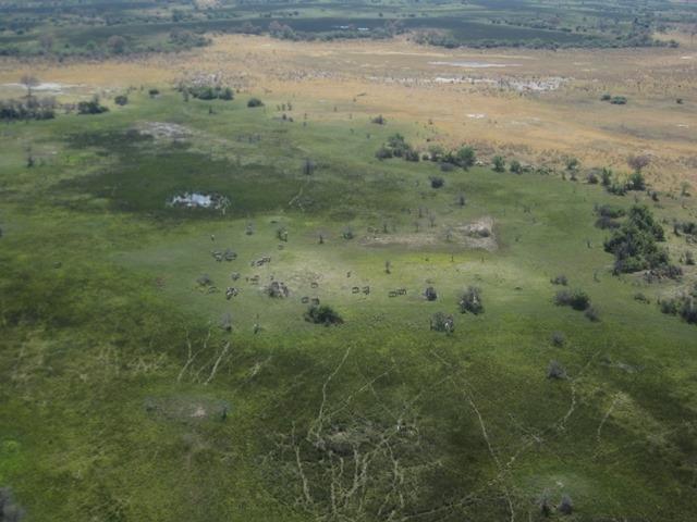 76 Okavango repülés (51)