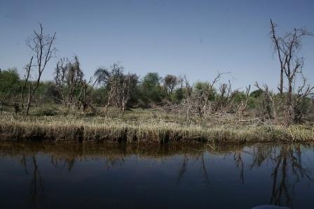 Botswana 2013 p (76)