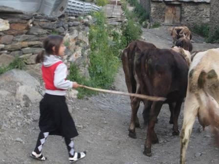 Gruzia 2015 kisgep (256)