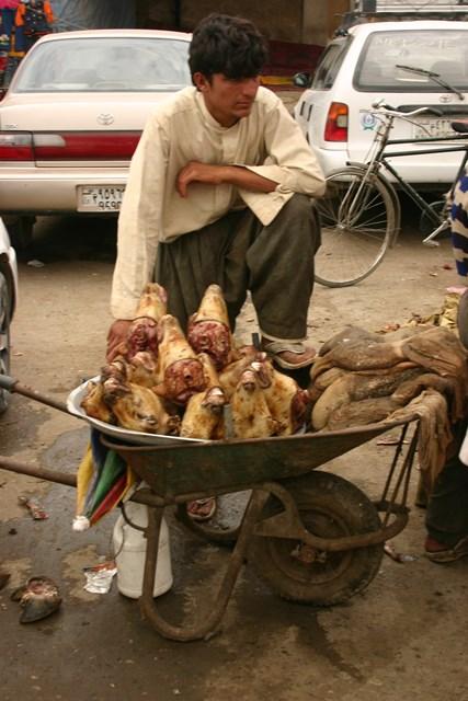 09-Kabul-valasztas-61