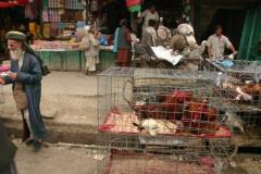 09-Kabul-valasztas-102