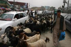 15-Kabul-city-30