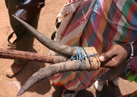 kaio-manjiko-tribe-84