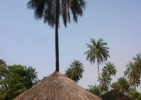 out-from-bissau-35