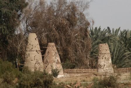 17-Al-geddida-kalamun-Dakhla-5