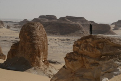 06-black-desert-37