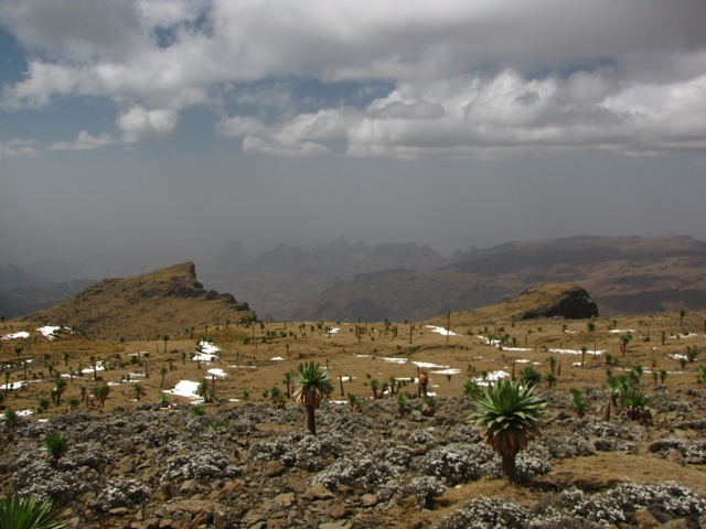 36_simien_to_bwahit_summit-44