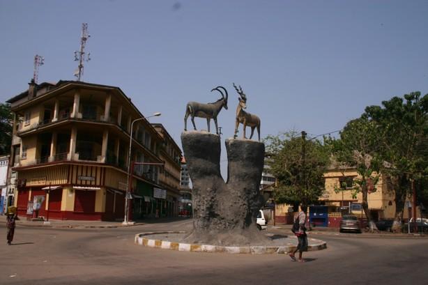 guinea-con-30