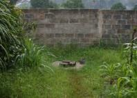 guinea-con-106