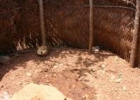guinea-con-9