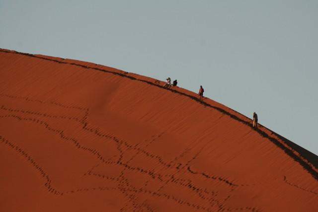 Namibia 2013 safari (101)