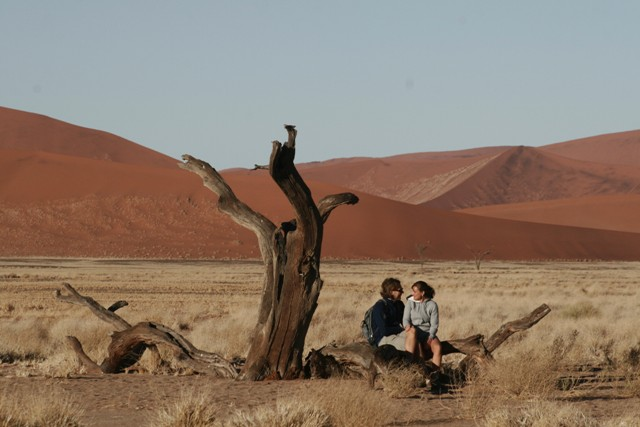 Namibia 2013 safari (113)