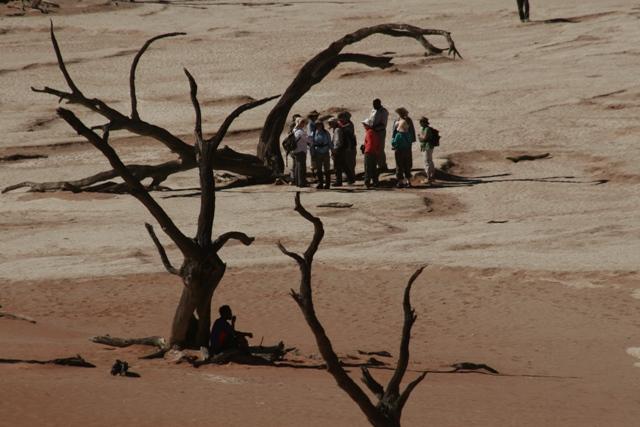 Namibia 2013 safari (192)