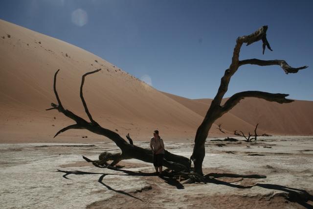 Namibia 2013 safari (203)