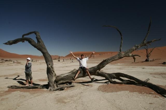 Namibia 2013 safari (208)