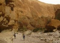 11-2-desert-walk-2
