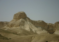 izrael-fo-foto-javallatok-5