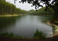 30-lake-maligne-jasper-np-9