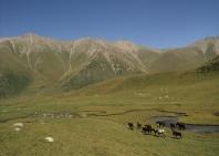 11-lake-trekking-11