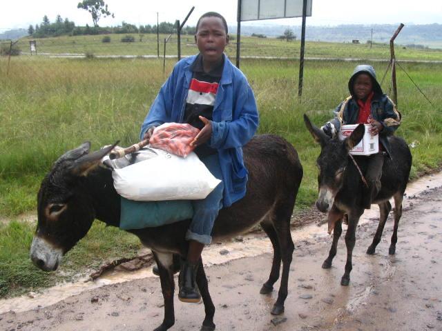 Lesotho-486