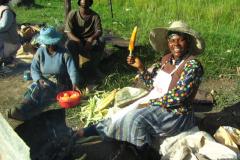 Lesotho-581