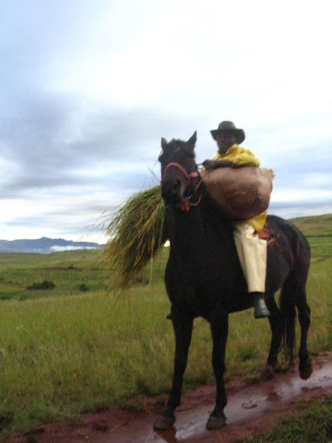 Lesotho-676