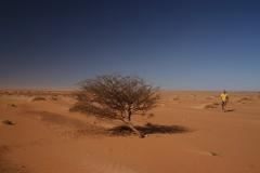 13-Mauritania-érk-135