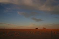 13-Mauritania-érk-65