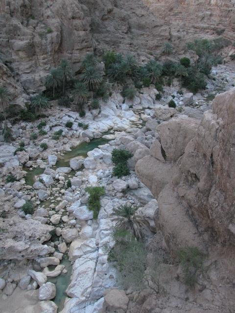 03_wadi_arabiana_shaab-177