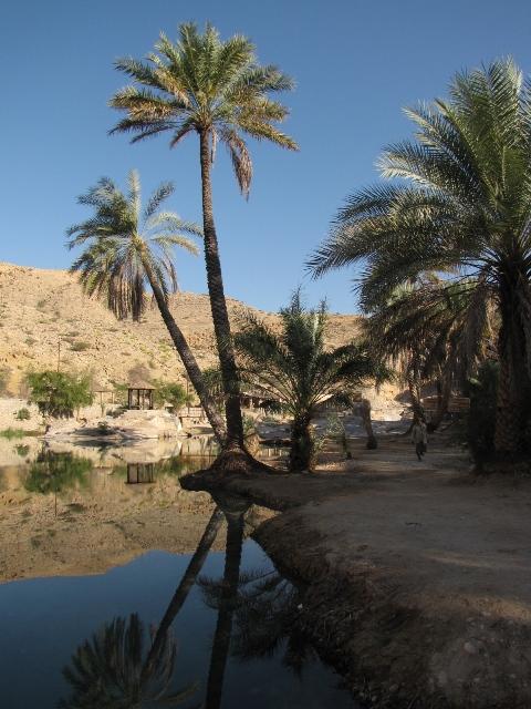06_wadi_bani_khalid-13