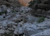 03_wadi_arabiana_shaab-144