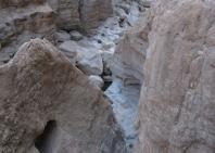 03_wadi_arabiana_shaab-171