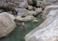 03_wadi_arabiana_shaab-187
