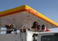 19_road_to_salallah-5