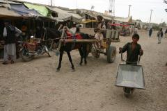 04-Balkh-49