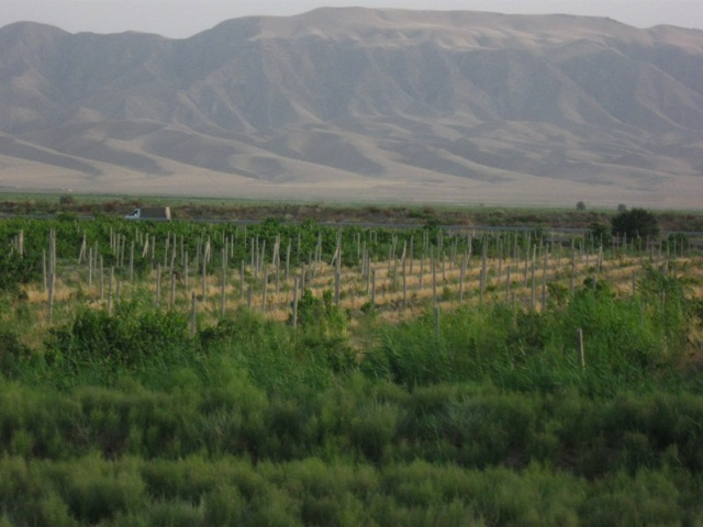05-Asgabat-183