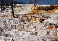83-yellowstone-mammoth-hot-spring-17