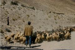 05-Wakhan-area-55