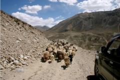 05-Wakhan-area-99