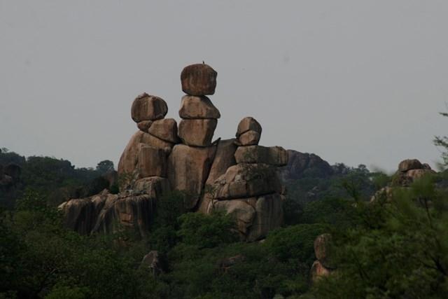Zimbabwe 2013 (75)